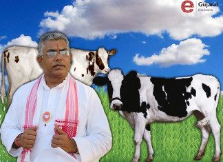 BJP Leader Ghosh Claims Cow Milk Contains Gold