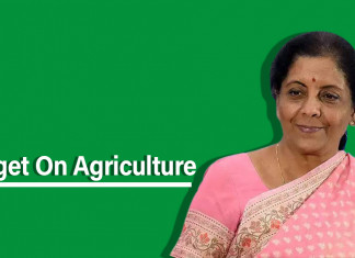 Budget 2020: Nirmala Sitharaman Gift for Farmers to Extend 'PM Kusum Scheme' to Boost Income by 2022
