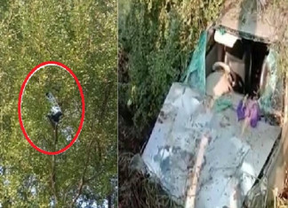 Car hits bike in Surat accident, flings child up into a 20ft tree