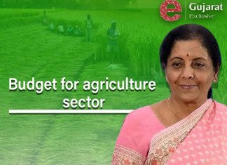 Budget 2021-22: Centre committed to welfare of farmers, says Nirmala Sitharaman