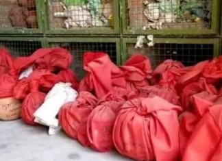 Over 500 urns with ashes of those cremated pile up at Rajkot crematorium awaiting immersion