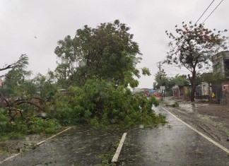 Gujarat declares threat from cyclone Tauktae over, 13 dead