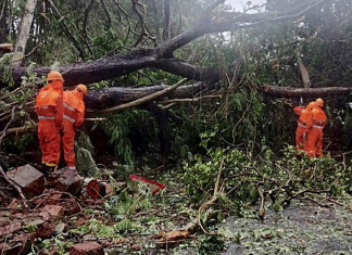 Central team in Amreli to take stock of cyclone Tauktae damage